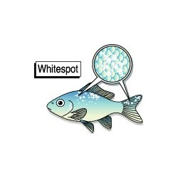 eSHa EXIT - ANTI WHITESPOT TREATMENT