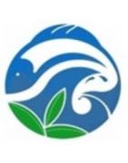 Online Aquarium Store India | Aquarium Plants | Aquarium Accessories